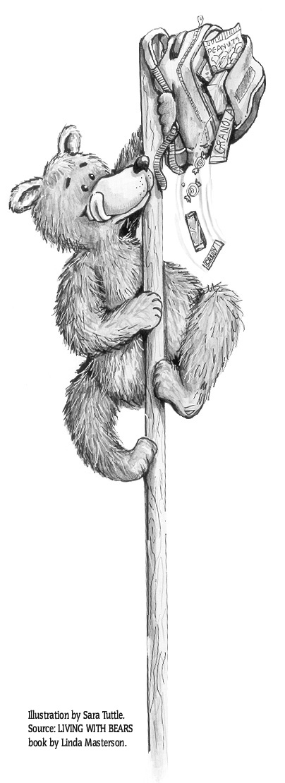 Bear on Pole