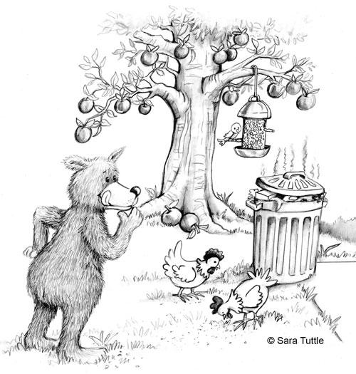 Sara Tuttle bear illustration